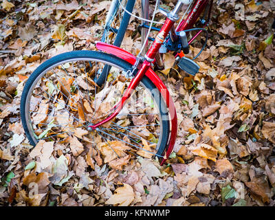 Bikes parked in deep autumn leaves in Cambridge UK - Stock Photo