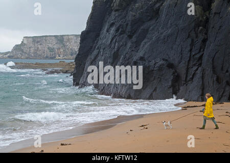 woman with dog at the beach, Ballintoy, Co. Antrim, Northern Ireland - Stock Photo