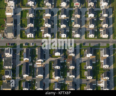 New settlement Count Bismarck, semi-detached houses, residential property, Count Bismarck, Marina Rhine-Herne Canal, - Stock Photo