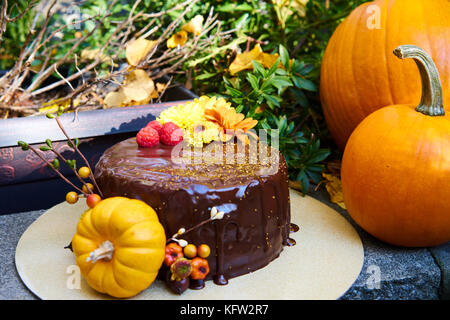 Farm market. Pumpkins harvest. - Stock Photo