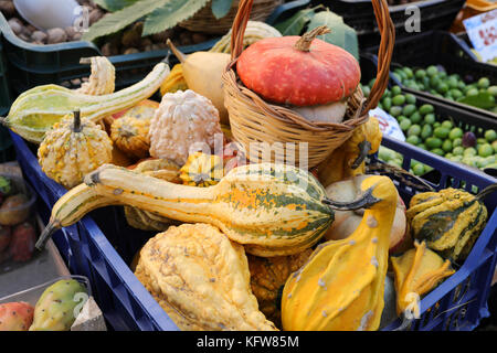 Various ornamental squashes for sale on market stall in Italy. - Stock Photo
