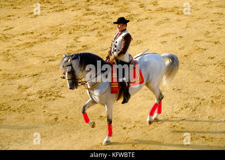 Andalusian Horse show - Stock Photo