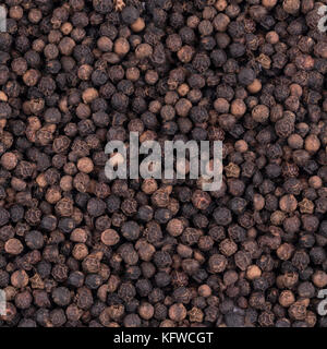 black peppercorns on a white background - Stock Photo