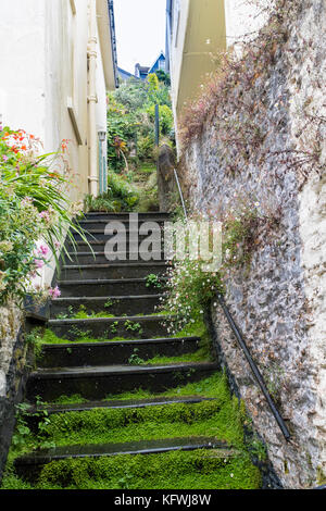 Colourful, Overgrown, Slate Steps Leading from a Dartmouth Street; Dartmouth, Devon, England. - Stock Photo