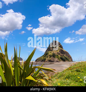 Piha beach with Lion Rock, Auckland Region, New Zealand. - Stock Photo