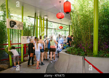 Berlin, Germany. 17th Aug, 2017. Zoo visitors walk through the panda house in the Zoological Garden in Berlin, Germany, - Stock Photo
