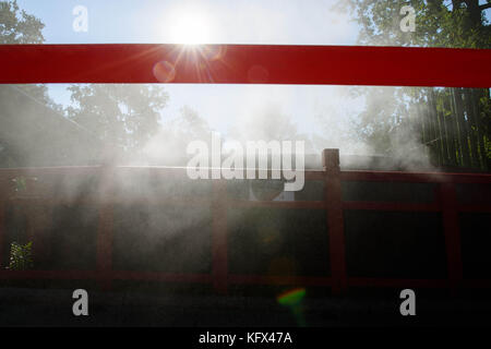Berlin, Germany. 17th Aug, 2017. Artificial steam can be seen at the panda house in the Zoological Garden in Berlin, - Stock Photo