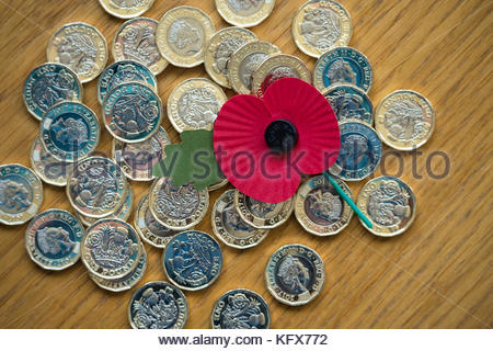 Poppy laying on a bed of £1 coins - Stock Photo