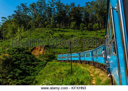 Train trip through the scenic mountains featuring many tea plantations between Nuwara Eliya (Nanu Oya) to Ella, - Stock Photo
