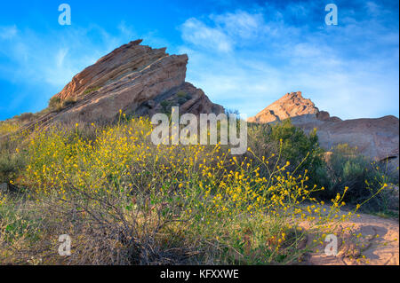 Iconic Vasquez Rocks with yellow blooming plants in the foreground photographed at sunset in Vasquez Rocks Natural - Stock Photo