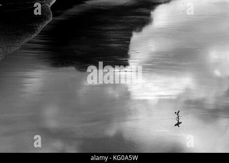 A surfer returning to dry land at Piha on Auckland's west coast, New Zealand - Stock Photo