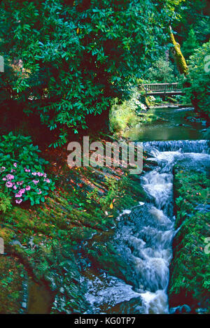 Bodnant Gardens,Conwy,Wales - Stock Photo
