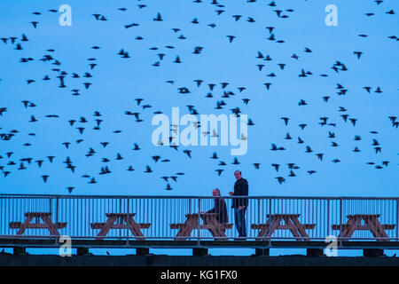 Aberystwyth Wales UK, Thursday 02 November 2017 UK Weather: Two men enjoy a quiet 'end of the day' drink on Aberystwyth's - Stock Photo