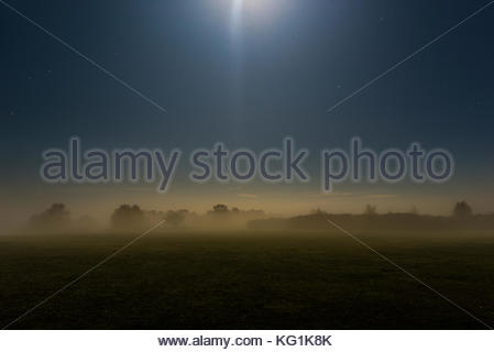 North West New Forest, Hampshire, UK, 2nd November 2017, UK Weather: Fog reforms in the evening moonlight after - Stock Photo