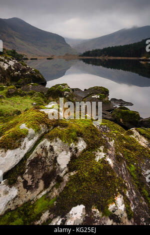 Moss covered rock, mountains and reflections in Cummeenduff Lake, Black Valley, Killarney, County Kerry, Munster, - Stock Photo