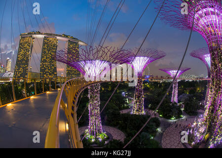Supertrees at Gardens by the Bay, illuminated at night, Singapore, Southeast Asia, Asia - Stock Photo