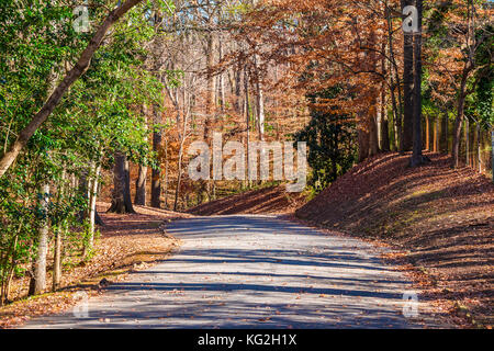 The road in the Lullwater Park in sunny autumn day, Atlanta, USA - Stock Photo