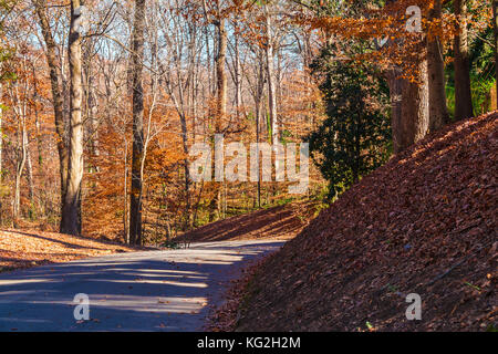 The road and the hill in the Lullwater Park in sunny autumn day, Atlanta, USA - Stock Photo