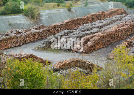 Timber piled high and carefully in a disused quarry in Shropshire - Stock Photo