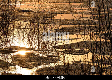 Abstract colorful spring background with ice floating on the water, willow branches and reflections in the lake - Stock Photo