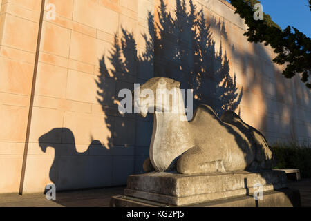 Seattle, Washington: Camel Sculpture casts a shadow on the Seattle Asian Art Museum at sunset. - Stock Photo