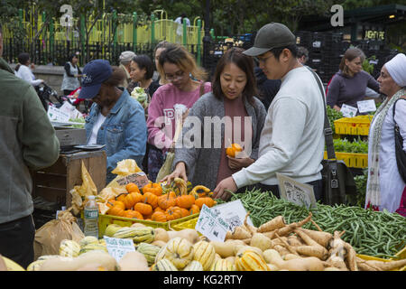 People shop for autumn offerings at the Farmers Market in Union Square, New York City. - Stock Photo