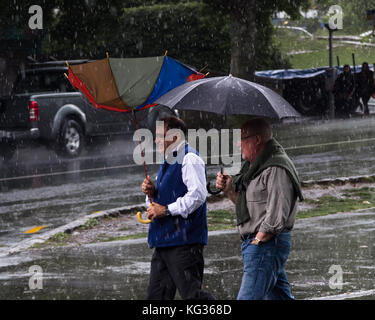Downpour at Auckland University, New Zealand Stock Photo