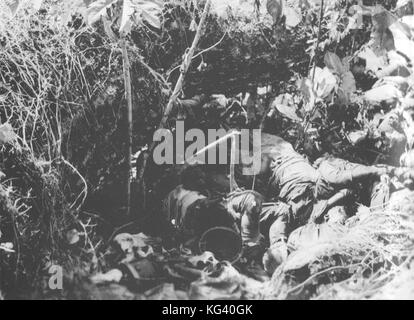 Dead soldiers from the Japanese 2nd Battalion, 4th Infantry Regiment lie piled in a ravine after being killed by mortar and small arms fire from U.S. Marines on 9 October 1942