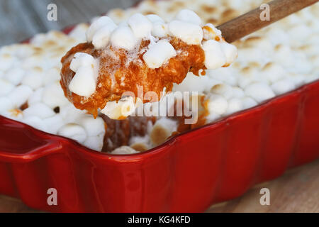 Spoonful of sweet potato casserole baked with mini marshmallows being served for Thanksgiving Day dinner. Extreme - Stock Photo