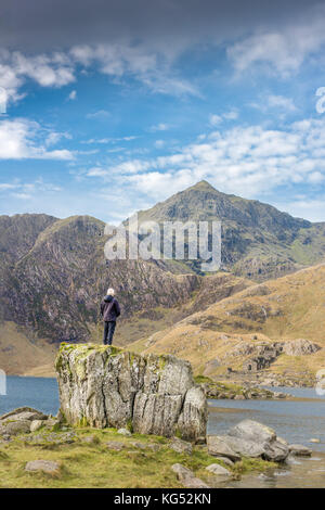 Solitary man stands on a rock and gazes at the peak of mount Snowdon, the highest mountain in England and Wales. - Stock Photo