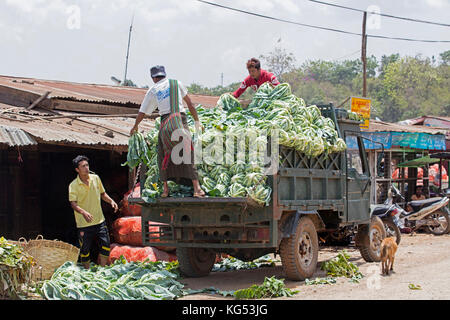 Burmese men unloading truck with cabbages in the town Aungban in the Kalaw Township, Taunggyi District, Shan State, - Stock Photo