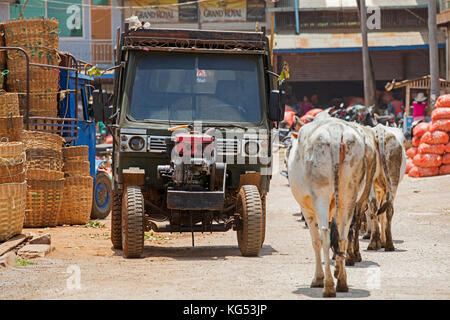 Chinese tractor and cows in the town Aungban, Kalaw Township, Taunggyi District, Shan State, Myanmar / Burma - Stock Photo