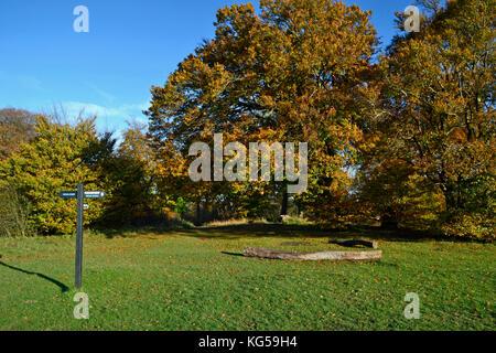Ridgeway Bridleway sign, on The Ridgeway Path, Whiteleaf Hill. Whiteleaf Woods, near Princes Risborough, Buckinghamshire. - Stock Photo