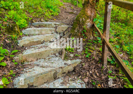 Concrete stairs closeup in the park Berendeyevo Tsarstvo in summer day, Sochi, Russia - Stock Photo
