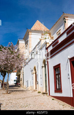 Silves, town on the river Arade, street with the orchid tree leads to the cathedral - Stock Photo