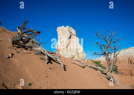 usa utah stone monolith in the kodakchrome basin state park stock photo alamy usa utah stone monolith in the