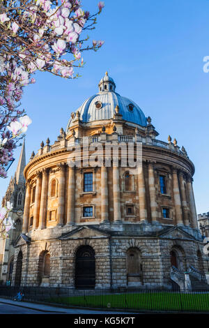England, Oxfordshire, Oxford, Oxford University, Bodleian Library, Radcliiffe Camera - Stock Photo