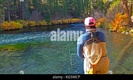 A woman angler casts a dry fly into the Metolius River in central Oregon, hoping to catch a rainbow trout. - Stock Photo