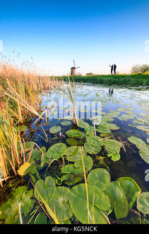 People admire windmills reflected in canal framed by floating leaves Kinderdijk Molenwaard South Holland The Netherlands - Stock Photo