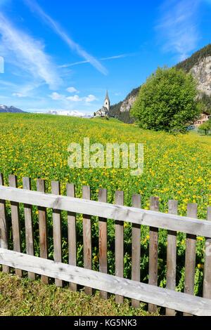 Wood fence and flowers, Schmitten, Canton of Graubünden, district of Albula, Switzerland - Stock Photo