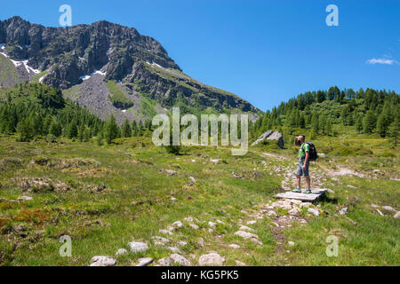 Italy, Trentino Alto Adige, San Pellegrino pass, Hiker on his way to the Cimon di Bocche peack along the trial n.628 - Stock Photo