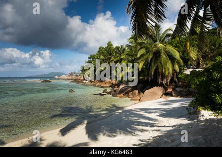 The Seychelles, Praslin, Petit Anse, empty beach, with shadow of palm tree on sand - Stock Photo