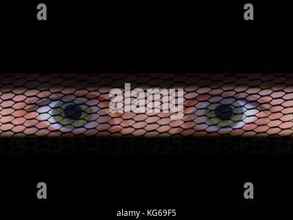 Young mysterious muslim girl's eyes behind burka. - Stock Photo
