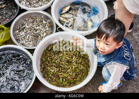 Lijiang, Yunnan, China - September 27, 2017: Child plays with edible insects on a local market. - Stock Photo