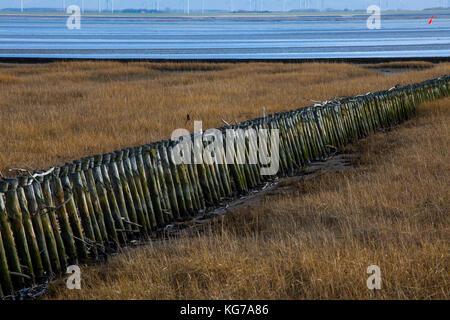 Unesco Weltnaturerbe Wattenmeer, Norderney,Wadden Sea World Heritage - Stock Photo
