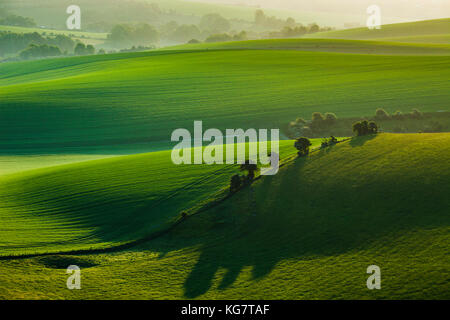 Spring sunrise in South Downs National Park, East Sussex, England. - Stock Photo