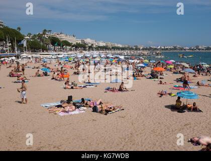 People enjoying sunbathing and swimming at beach along Boulevard de la Croisette, Cannes, Cote d'Azur, Provence-Alpes-Cote d'Azur, France.