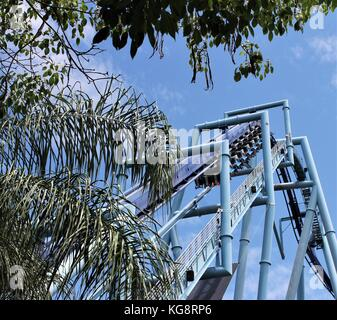 Looking up through the branches of a palm tree at a small section of a blue roller coaster. Only the soles of the - Stock Photo