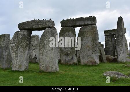 Birds on Stonehenge - Stock Photo