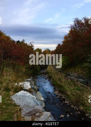 Trees whose leaves have turned to autumn colors cover the banks on both sides of a river. There are also American - Stock Photo